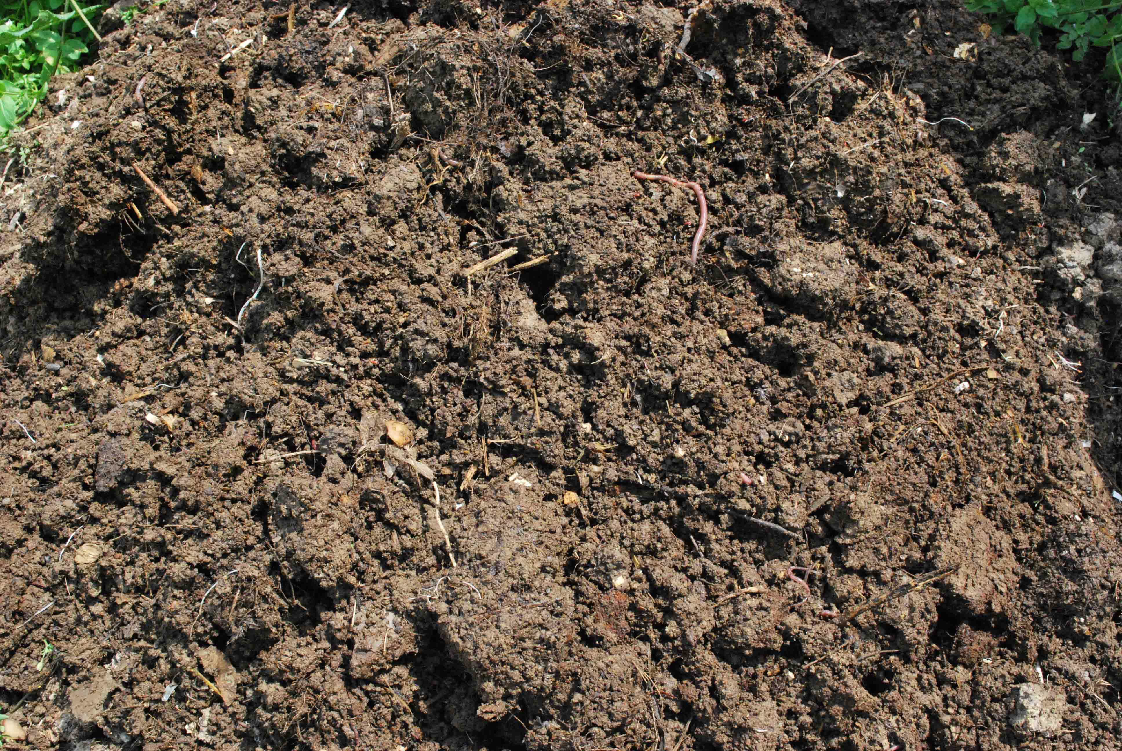 Compost 101 for Clay potting soil