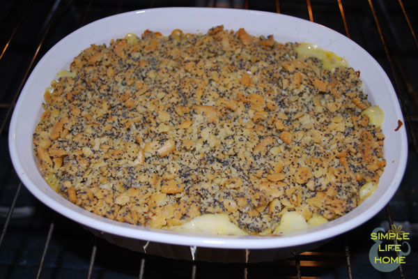 Baked poppy seed chicken