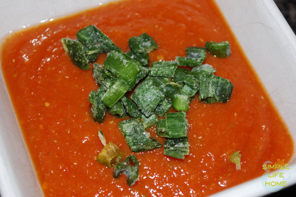 Homemade salsa with green onions