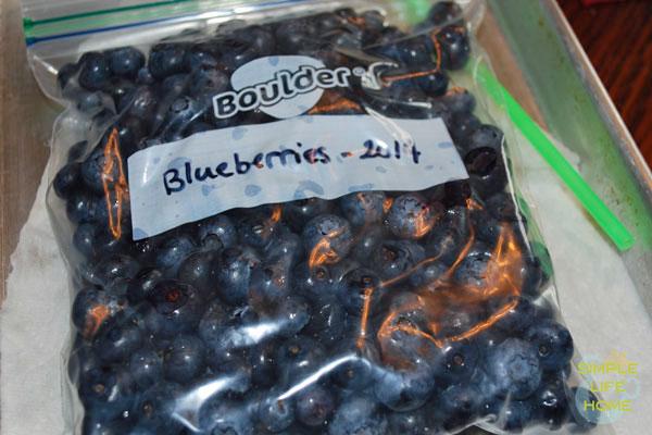 Blueberries in bag