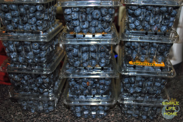 Pints of blueberries