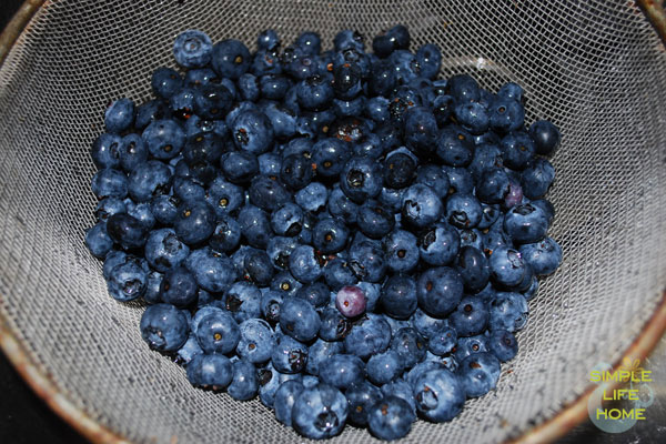 Rinse the blueberries