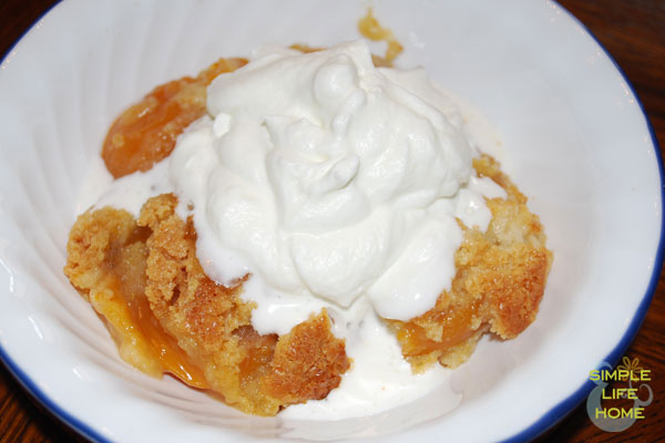 dump-cake-with-whipped-cream