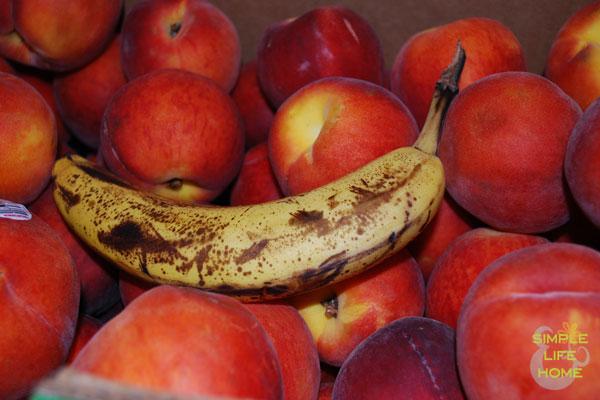 ripen-peaches