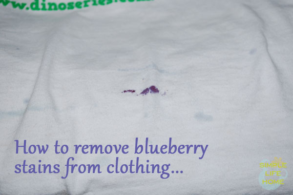 how to remove blueberry stains from clothing