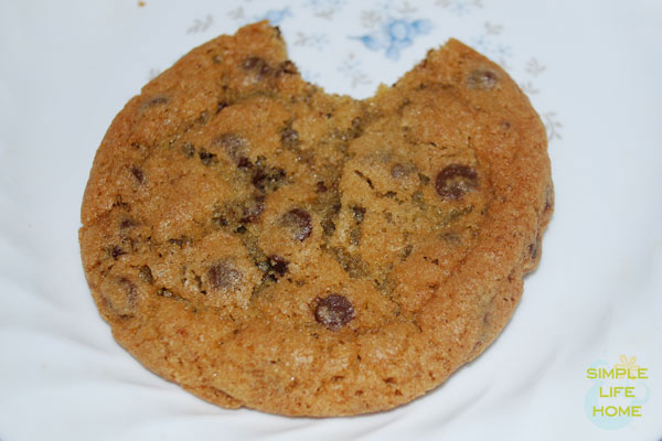 Chocolate-chip-cookie_logo